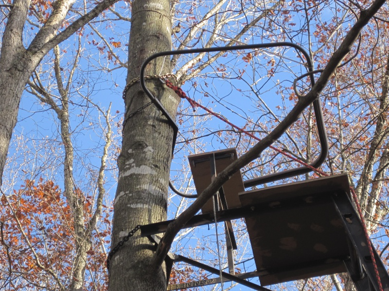 Hang on tree stands with shooting rail for Climbing tree stand plans